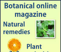 Plant Magazine of Botanical-online September 2017