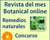 Revista de Plantas de Botanical-online