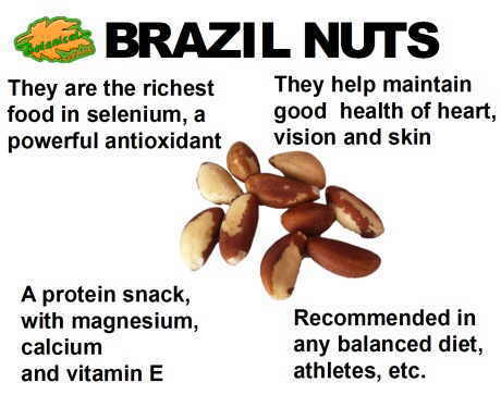 Brazil nuts properties