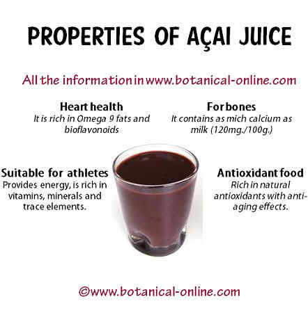 Properties of acai
