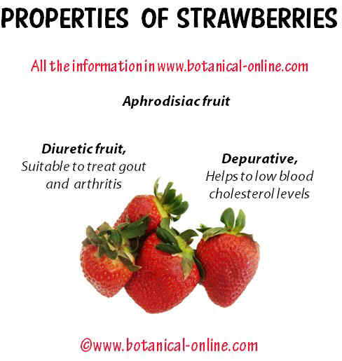 Properties of strawberries