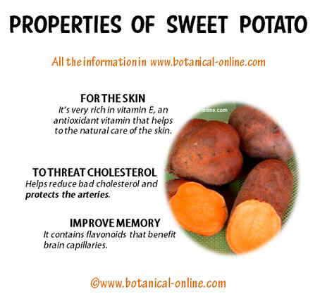 Properties of weet potatoes