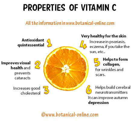 Properties vitamin C