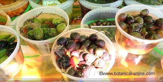 Mediterranean preserved olives