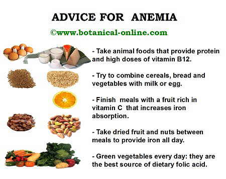 Guideles in the diet for anemia