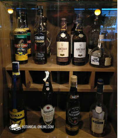 Exhibition of high-alcohol alcoholic beverages in a restaurant