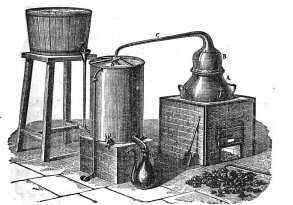 essential oil steam distillation method