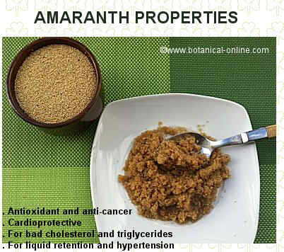 Amaranth properties