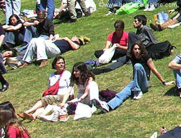 people on the grass