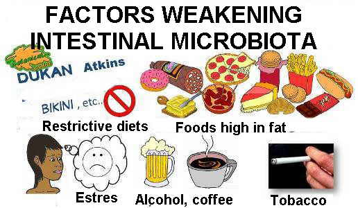 Harmful or debilitating food for intestinal microbiota, or flora.