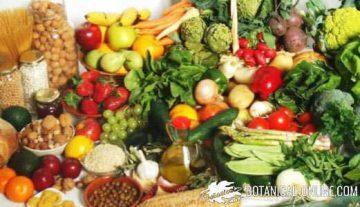 Mediterranean still life diet