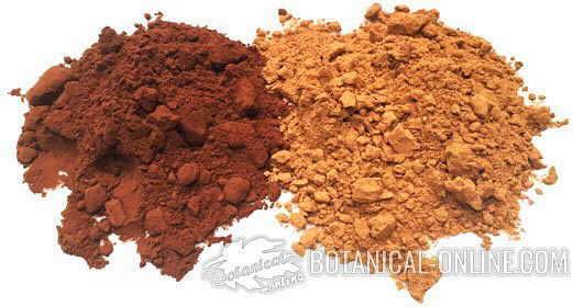 Cacao powder (left) and carob powder (right)