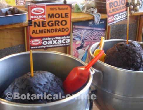 Photo of mole in a market in Oaxaca, Mexico