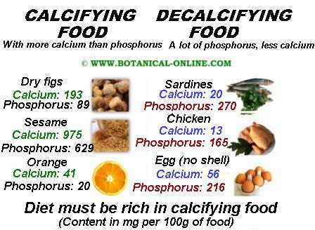 theory of decalcifying foods