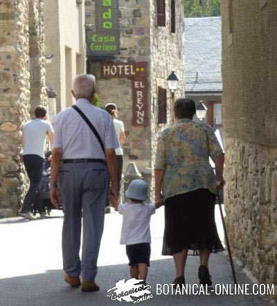 old people walking in the street with their grandson