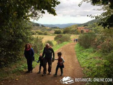 Family walking in the countryside