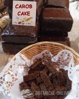 sponge cake with carob flour