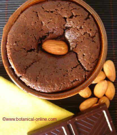 chocolate coulant