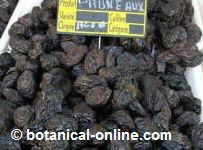 Photo of prunes