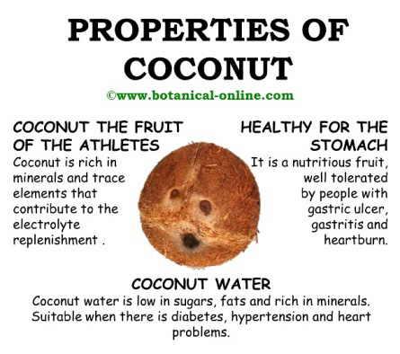 Coconut properties