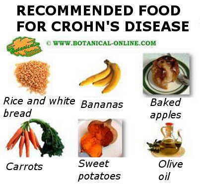 Plant-based diet for Crohn's disease – Botanical online