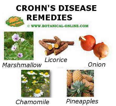 Crohn's disease main remedies
