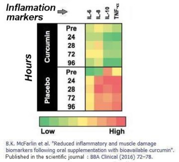 curcuma inflammation markers experimental result