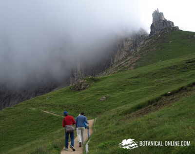People walking in the mountain