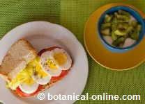 Egg sandwich, yogurt and fruit