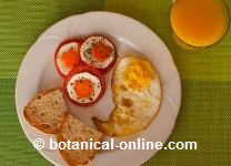 Fried egg with bread and tomato