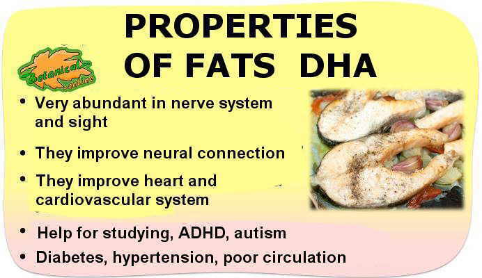 main properties of omega 3 DHA