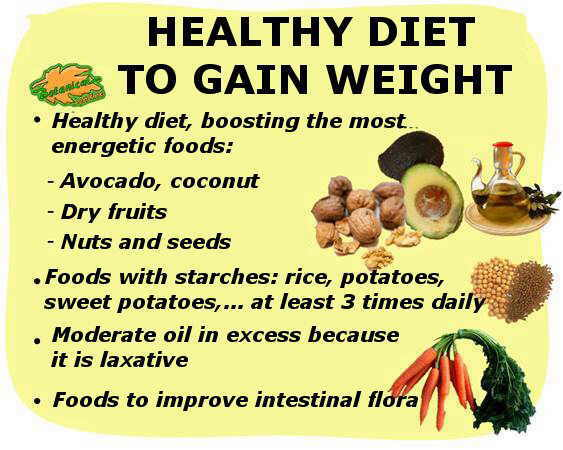 Eating plan to gain weight healthy