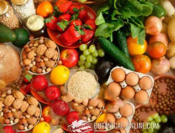 balanced diet vegetarian healthy food