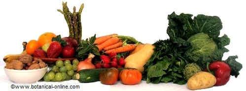 Vegetables of Mediterranean diet