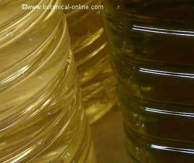 Differences between sunflower oil and olive oil