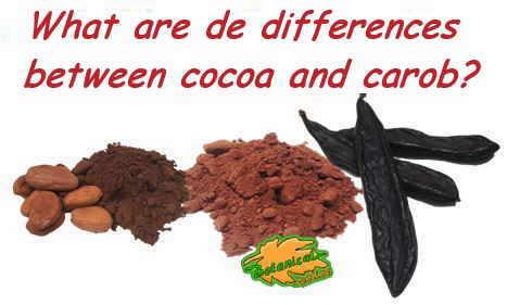 cocoa flour and carob flour