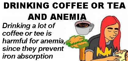 coffee and tea for anemia kidnap iron