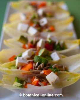 Endive salad with cheese and sunflower seeds