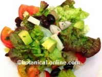 salad with avocado and fennel