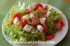green salad with cheese, tomato and linseed