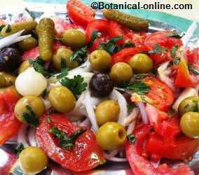 Tomato salad with parsley and garlic