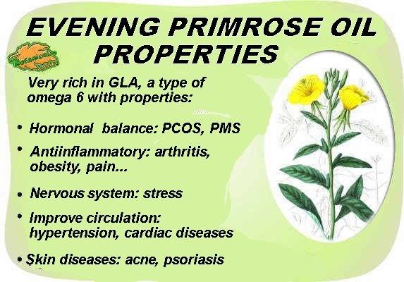 primrose oil properties drawing