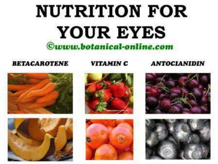 Nutrition diet for eyes and eyesight