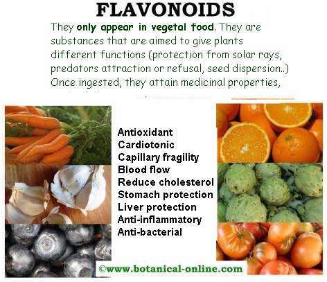 flavonoids properties