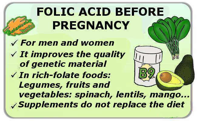 Folic acid before pregnancy