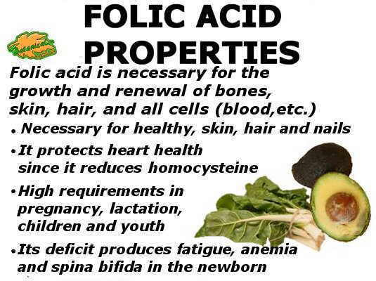 Summary of the main properties of folic acid or vitamin B9