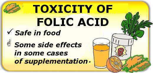 folic acid toxicity