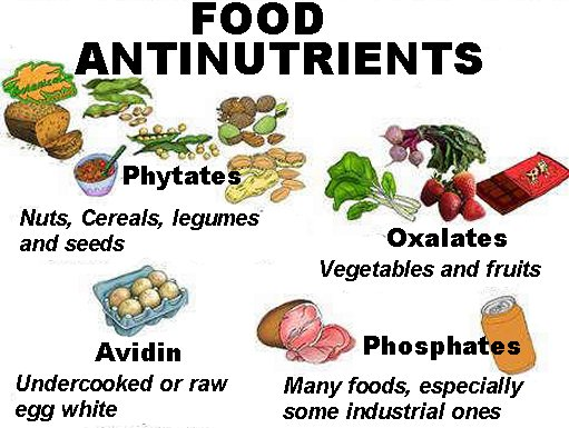 Food antinutrients in legumes, cereal and vegetables: Phytates, oxalates, phosphates