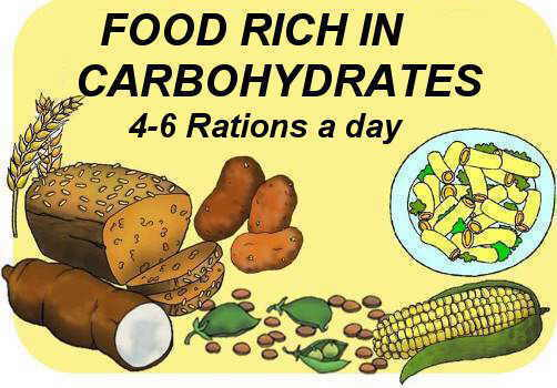 food pyramid, carbohydrates
