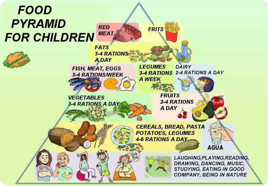 piramide nutricional niños